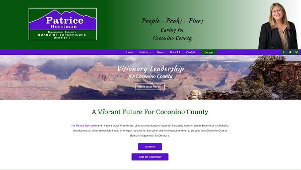 Patrice for Supervisor website